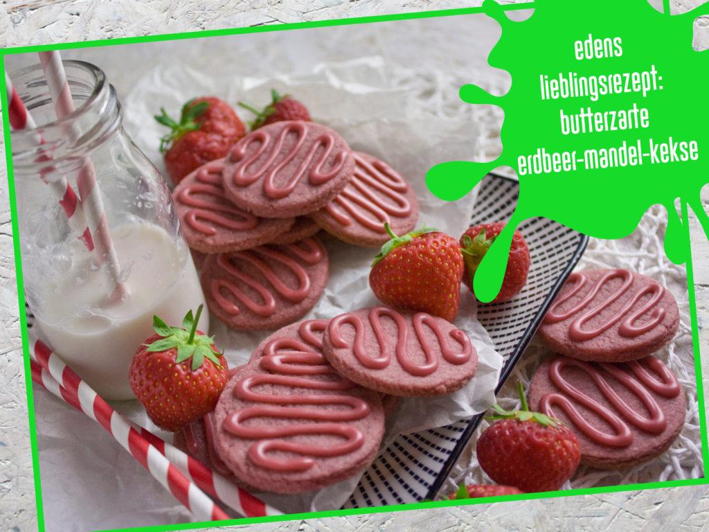 Lieblingsrezept, Erdbeer-Mandel-Kekse, Geburtstagsrückblick, Toastenstein, Food Blog