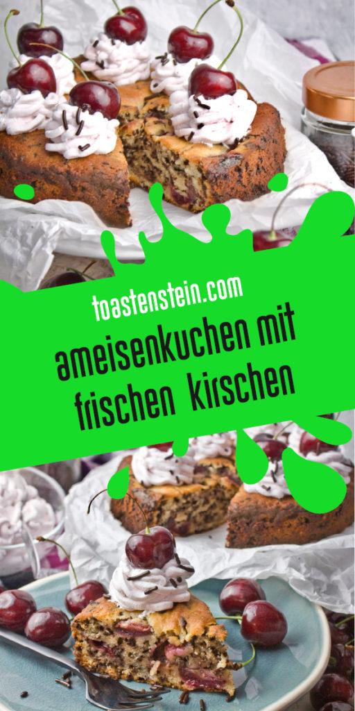 Veganer Ameisenkuchen mit frischen Kirschen | Toastenstein